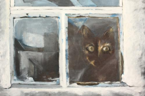 Kot z Roztocza